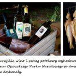 szlak-jurajskich-winnic-piknik-inaugurujacy (1)